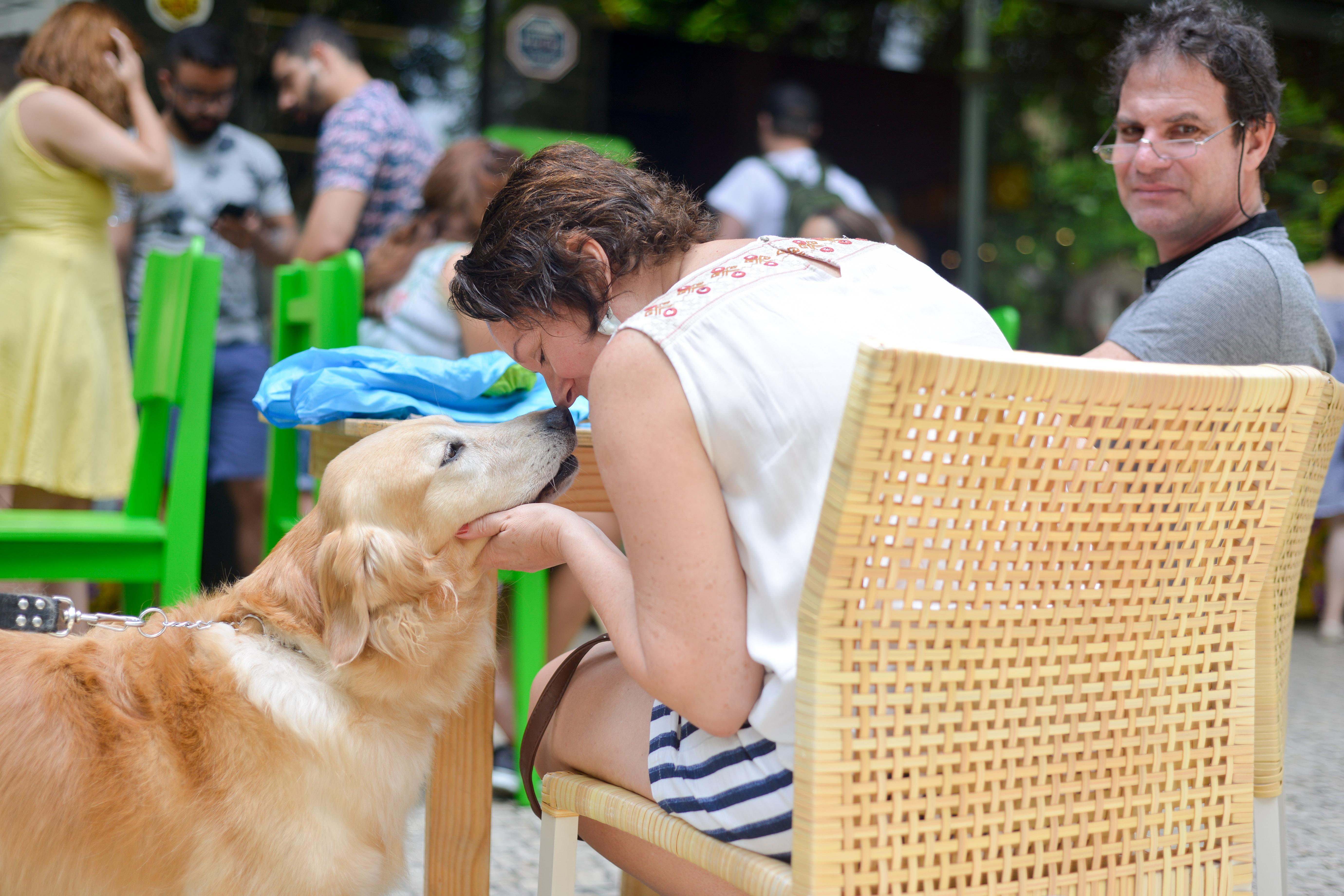 Cachorro Feira Fresca Incontrês