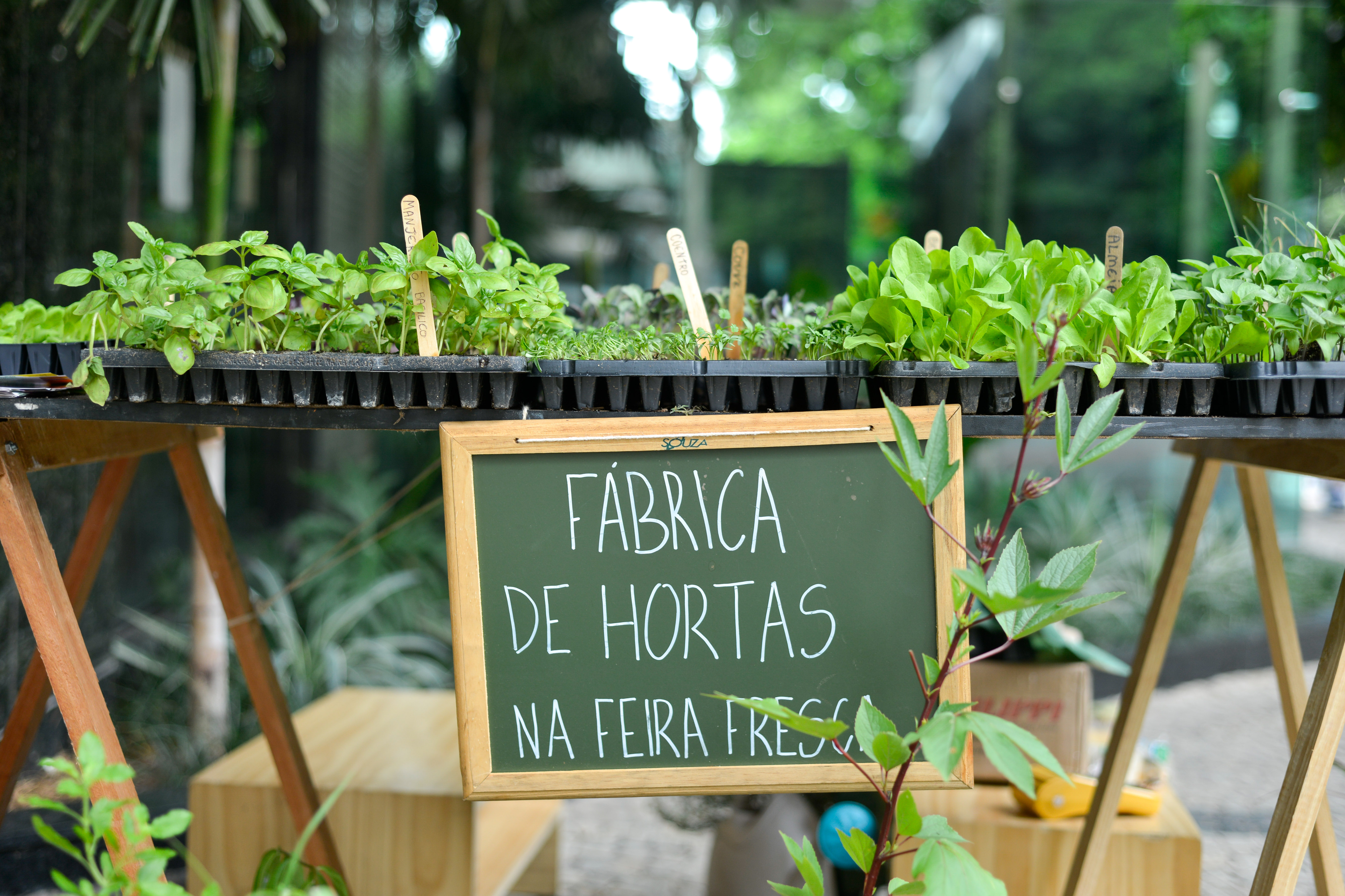 Fábrica de Hortas Feira Fresca