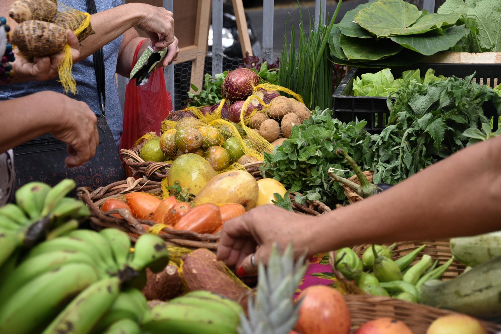 Hortifruti orgânico Feira Fresca