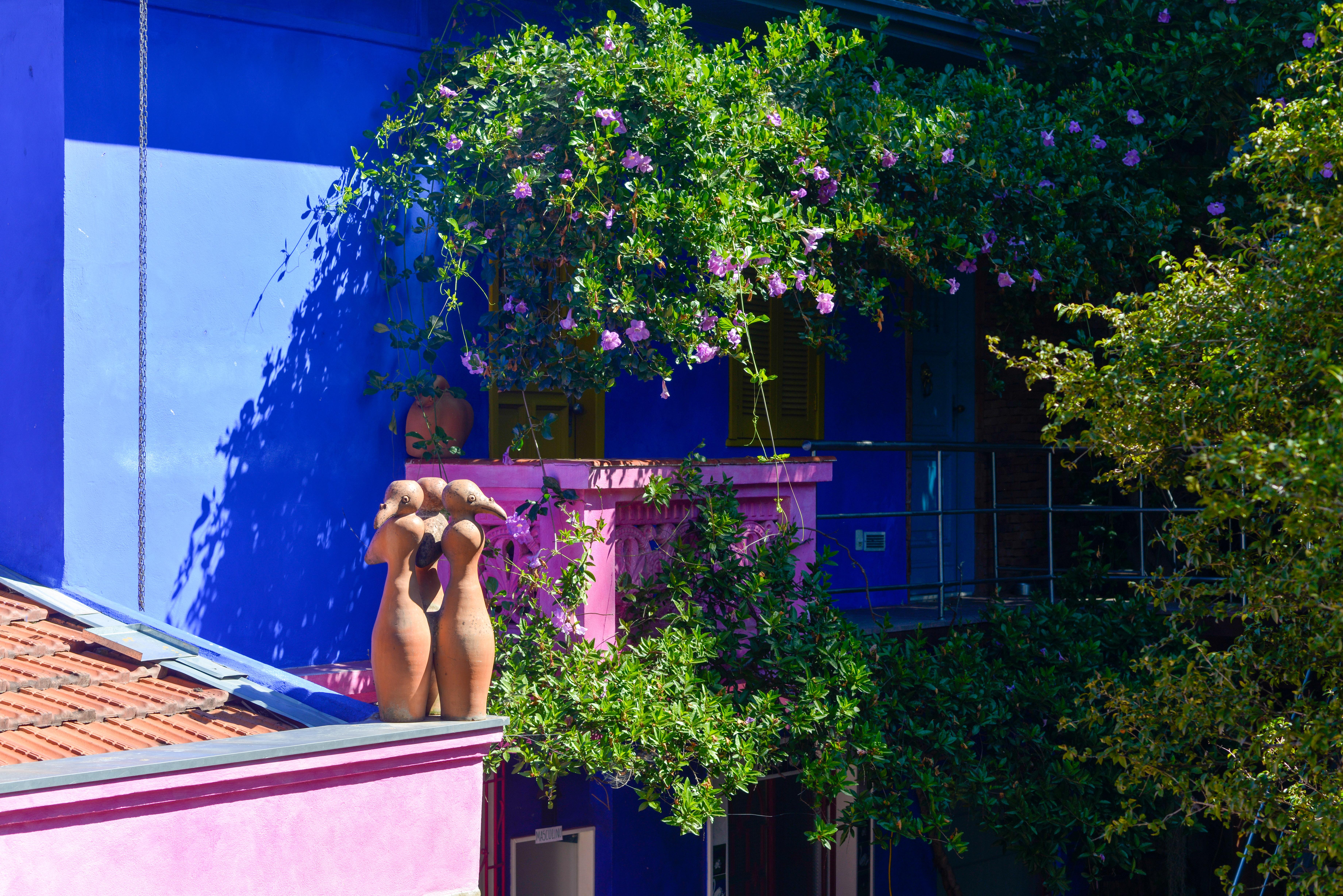 Casa Rosa do Bonfim - Feira Fresca
