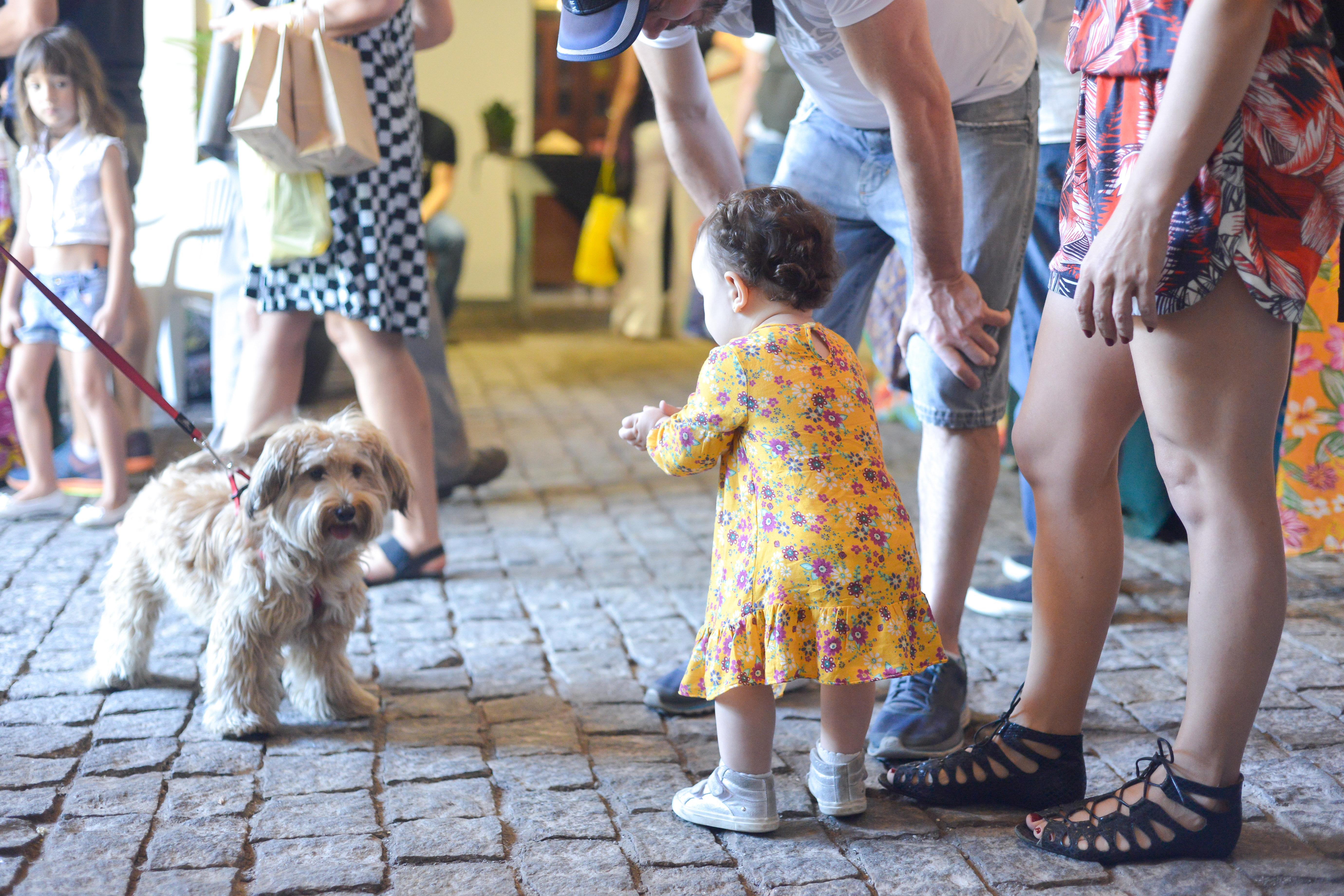 Criança e cachorro na Feira Fresca na Vila 211
