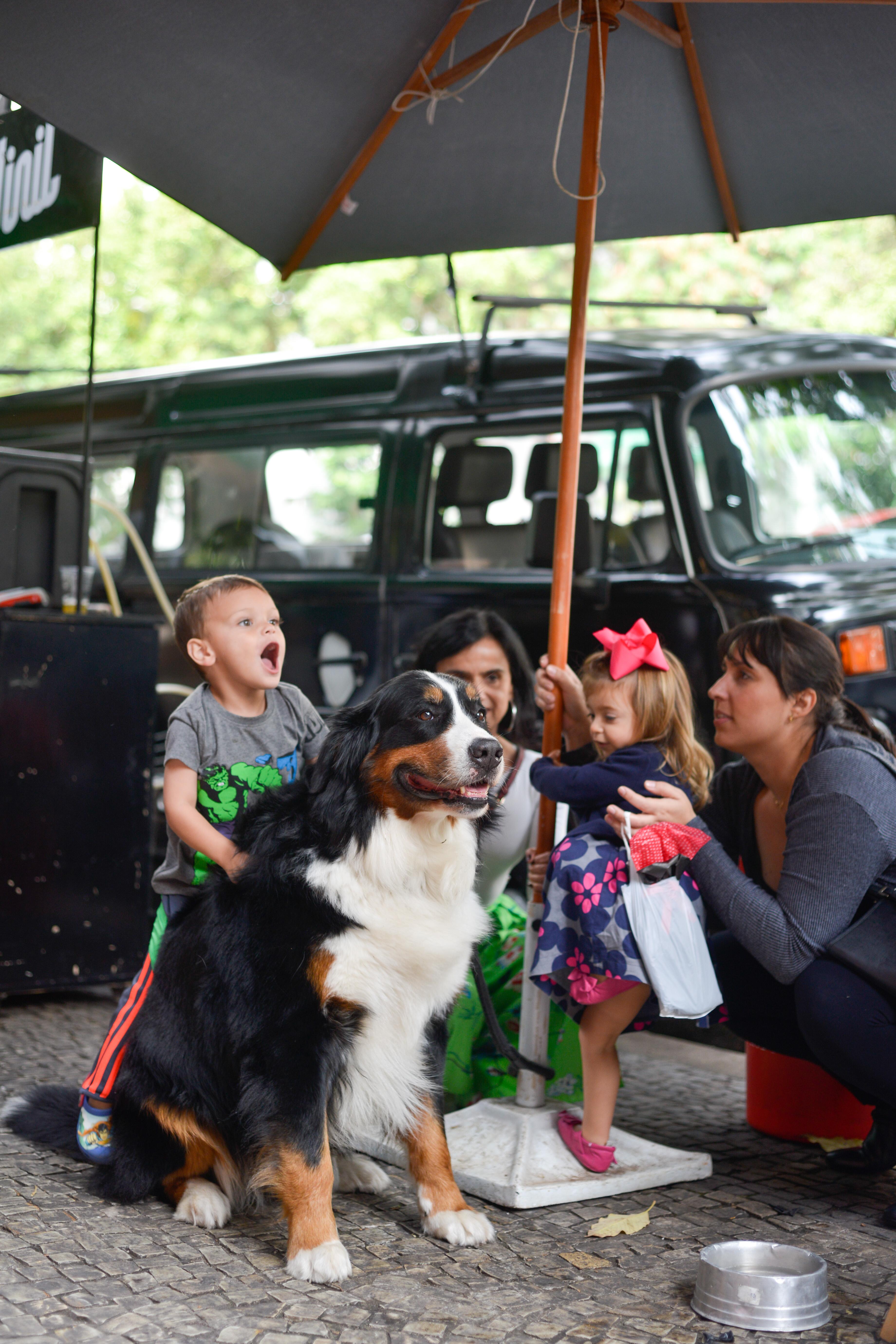 Cachorro, Criança e Kombi da Cerveja Vinil na Feira Fresca