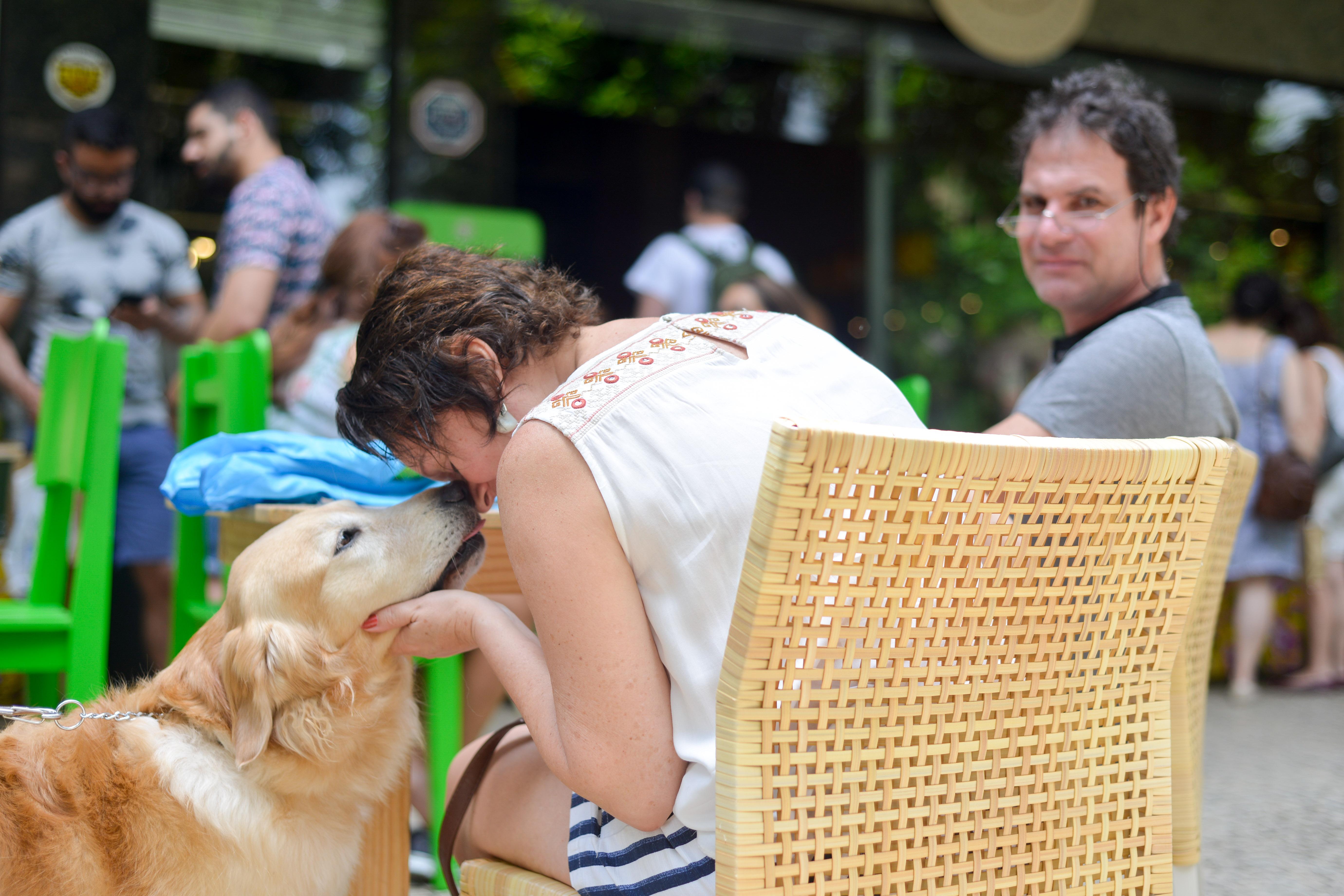 Cachorro na Feira Fresca