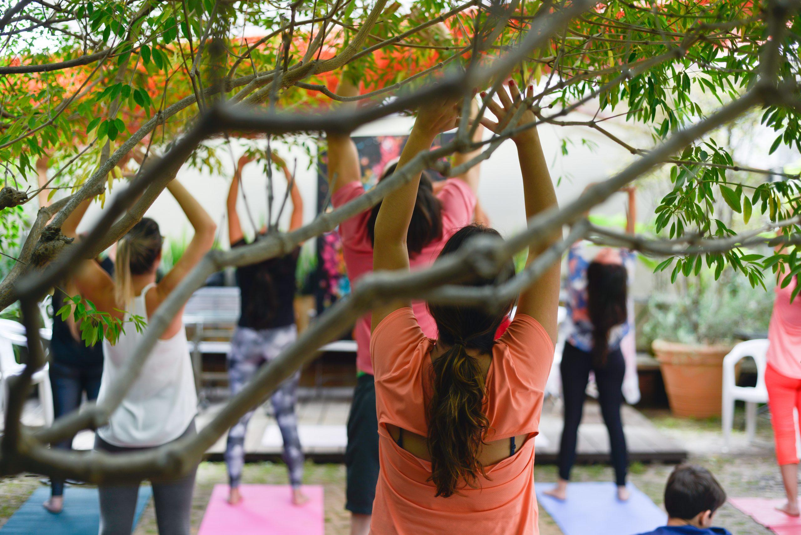 Yoga na Feira Fresca na Vila 211