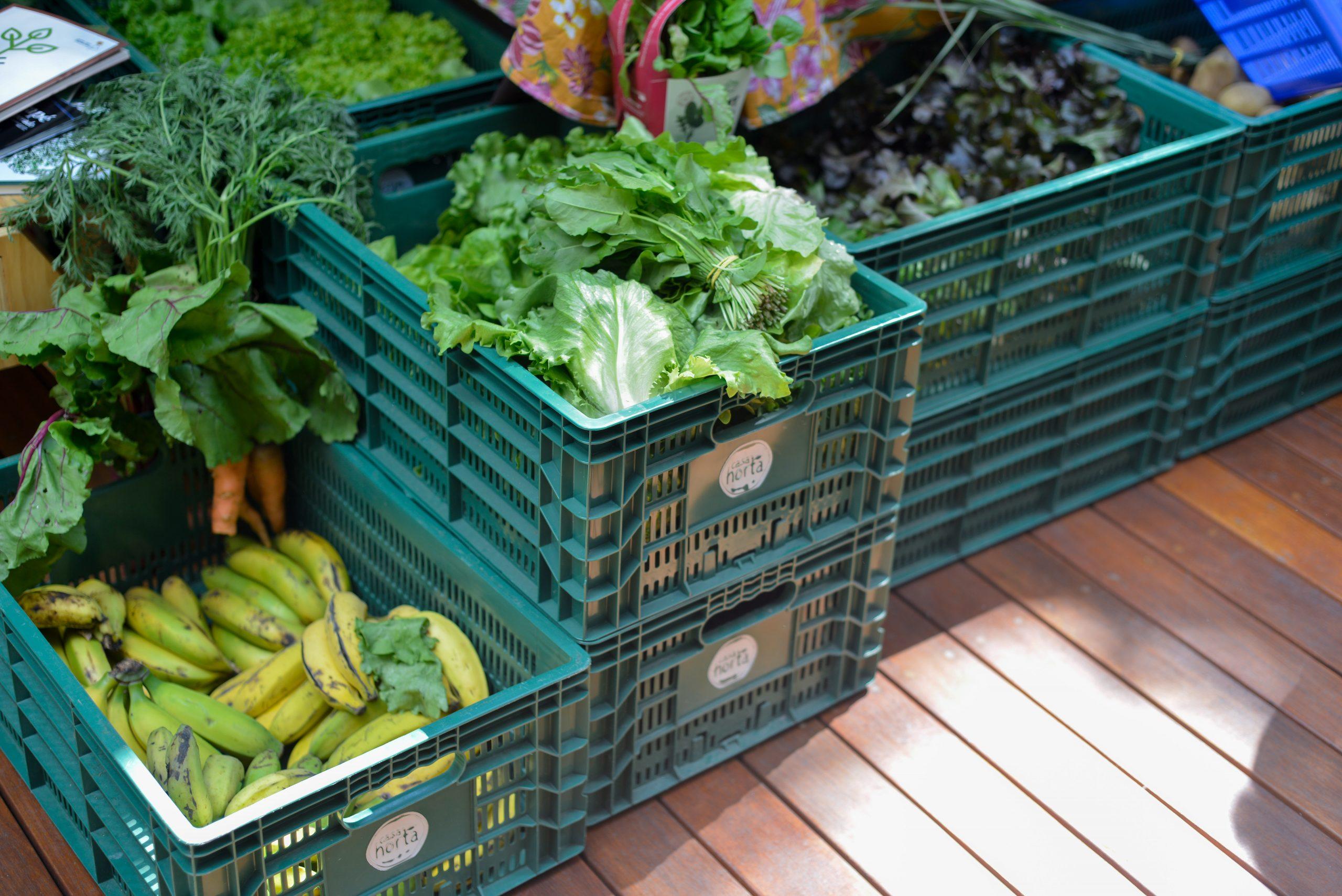 Hortifruti organico na Feira Fresca